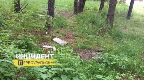 Кладбище домашних животных уничтожили в Первоуральске