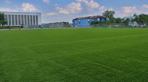 С 13 июля в Первоуральске открываются стадионы и спортивные секции