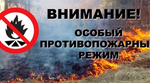 В Первоуральске введён особый противопожарный режим