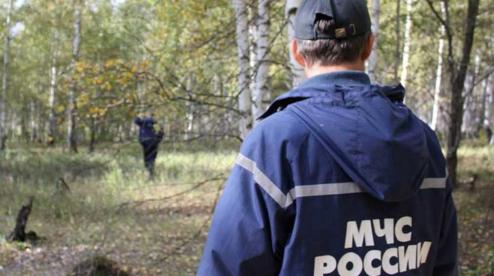 Больше всего людей пропадает в лесах Первоуральска